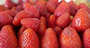 Świeże, dojrzałe, soczyste truskawki, wirują na bielu talerzu przeciw białemu tłu zbiory
