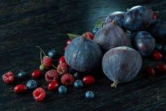 Świeże figi różne rozmaitość jagody Obraz Royalty Free