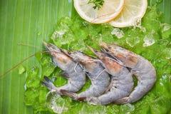 Świeże garneli krewetki z cytryną i lodem na bananowego liścia tła odgórnym widoku - Surowa garnela zdjęcia stock