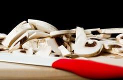 świeże grzyby Zdjęcia Royalty Free