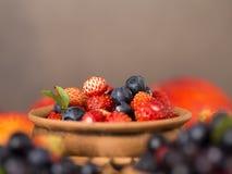 Świeże i zdrowe lasowe jagody Obraz Royalty Free