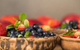 Świeże i zdrowe lasowe jagody Obraz Stock