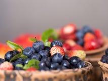 Świeże i zdrowe lasowe jagody Zdjęcie Royalty Free