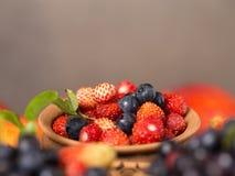 Świeże i zdrowe lasowe jagody Zdjęcia Royalty Free