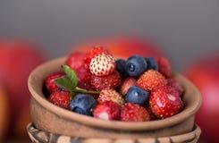 Świeże i zdrowe lasowe jagody Obrazy Royalty Free