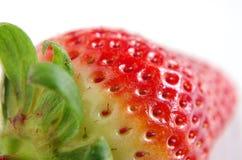Świeże i zdrowe truskawki Zdjęcie Royalty Free