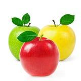 świeże jabłka Obrazy Royalty Free
