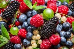 Świeże jagodowe owoc Obrazy Stock