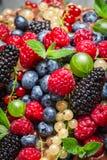 Świeże jagodowe owoc Zdjęcia Stock