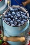 Świeże jagodowe owoc w kierzance Zdjęcia Stock