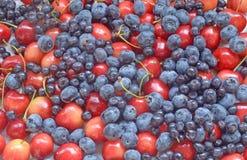 Świeże jagody, żółte wiśnie, czarne jagody i blueber - czerwone, Zdjęcia Royalty Free