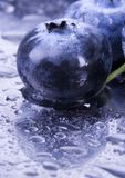 świeże jagody Zdjęcie Royalty Free