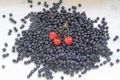 Świeże jagody - czarne jagody rozpraszają na drewnianej powierzchni Zdjęcia Stock