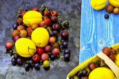 Świeże jagody morela, wiśnia i agrest, Zdjęcie Stock