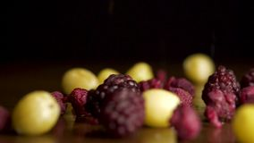 Świeże jagody spadają na stole Czarne jagody, malinki, agresty, cranberries spadają na stole na czerni zdjęcie wideo