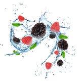 Świeże jagody z wodnym pluśnięciem Zdjęcia Royalty Free