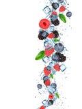 Świeże jagody z wodnym pluśnięciem Zdjęcia Stock