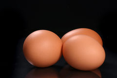 świeże jajko Zdjęcia Stock