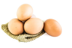 świeże jajko Obrazy Royalty Free
