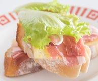 świeże kanapki dwa Obraz Stock