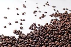 Świeże kawowe fasole rozprzestrzeniać obrazy royalty free