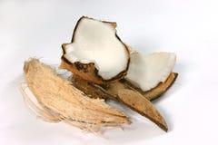 świeże kokosów Obraz Royalty Free