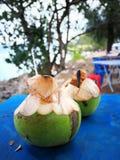 świeże kokosów Fotografia Stock