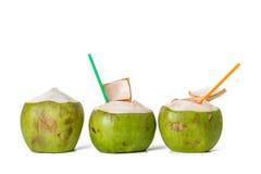 świeże kokosów Zdjęcie Stock