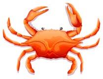 świeże kraba ilustracji
