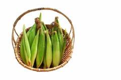Świeże kukurudze w koszu na białym tle Zdjęcia Stock
