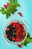 Świeże lato jagody w koszu na turkusowym tle Obrazy Stock