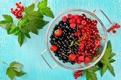 Świeże lato jagody w koszu na turkusowym tle Obrazy Royalty Free
