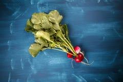 Świeże małe czerwone rzodkwie Zdjęcia Royalty Free
