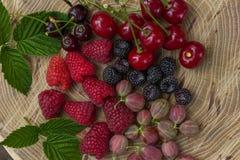 Świeże malinki, czernicy, agrest i wiśnia, Zdjęcie Royalty Free