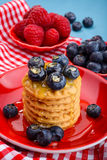 Świeże malinki i czarne jagody na ciastkach Fotografia Stock