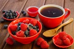 Świeże malinki i czarne jagody na curd Obraz Royalty Free