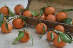 Świeże mandarynek pomarańcze owoc lub tangerines z liśćmi na drewnianym pudełku na stole zdjęcia stock