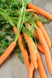 Świeże marchewki Obraz Royalty Free