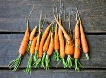 Świeże marchewki z korzeniami na zmroku ukazują się Zdjęcie Stock