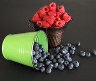 Świeże Mieszane jagody Fotografia Stock