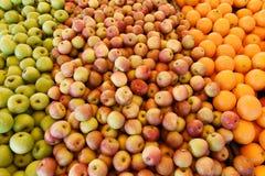 Świeże mieszane owoc obraz stock