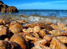 świeże na plaży Fotografia Royalty Free