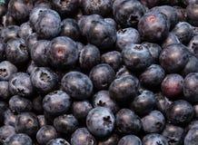 Świeże organicznie czarne jagody w papierowych koszach Obrazy Stock