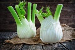 Świeże organicznie koper żarówki Zdjęcie Stock
