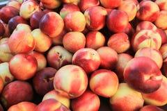 Świeże organicznie nektaryny od rynku w California Zdjęcia Royalty Free