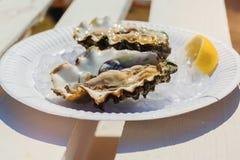 Świeże ostrygi na talerzu Zdjęcie Stock