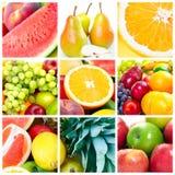 świeże owoc zdjęcie stock