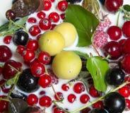Świeże owoc i jagody w mleku Zdjęcie Stock