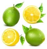świeże owoce cytrusowe Zdjęcia Royalty Free