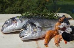 świeże owoce morza Zdjęcia Royalty Free